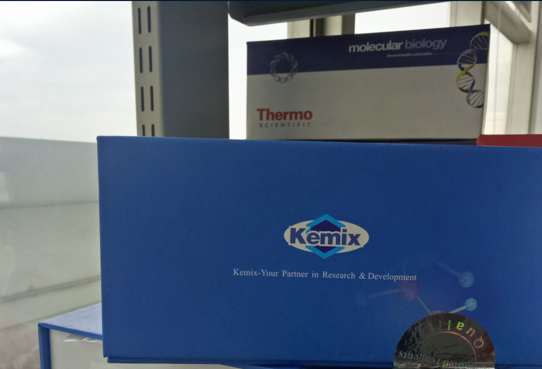 K3  FastLong PCR MasterMix